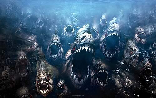 piranha-3d-2010.jpg