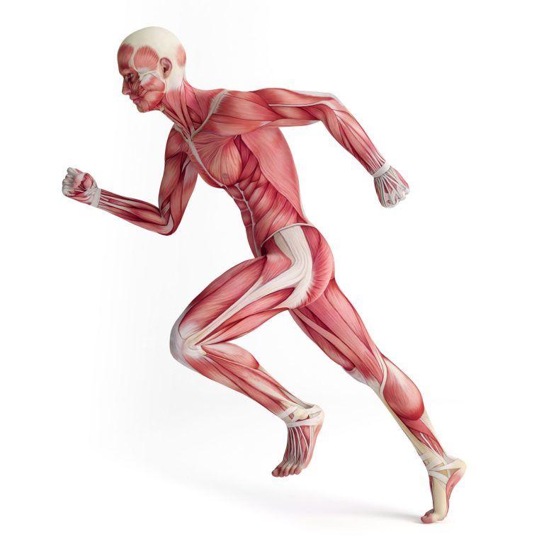 control-of-body-movement-768x768.jpg