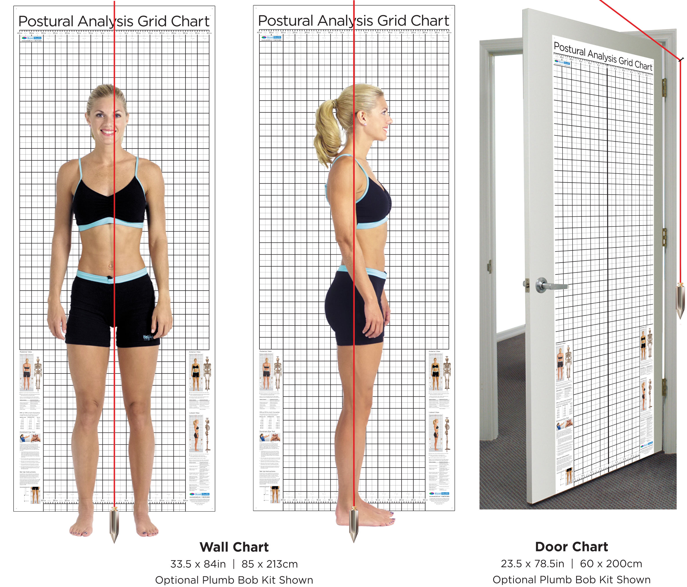 posture-chart-wall-and-door-sizes-with-plumb-bob-option-red.jpg