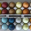 Fessünk tojást természetesen, zöldségek és gyümölcsök segítségével!