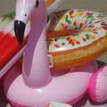 A flamingó éve