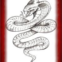 Kígyó Éve 2013