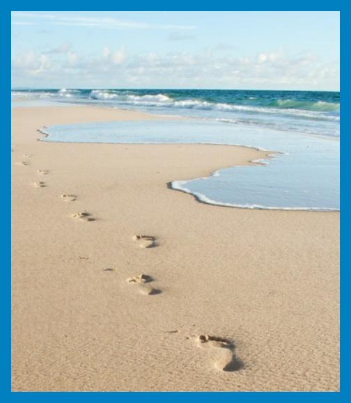 homokszemek.jpg