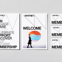A Whitney Múzeum új grafikai arculata