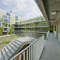 121 wohneinheiten - avagy egy új lakónegyed terei [M. Zs.]
