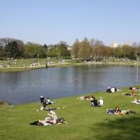 Hamburg - a terv: autómentesítés 20 éven belül