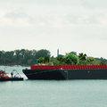 Csöbör - úszó oázis érkezik a Brooklyn Bridge park mellé