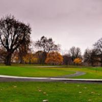 Diana emlékmű, Hyde park