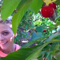 Cseresznyés, diétás finomság, sütés nélkül!