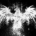 A sas leszáll – kortárs köztéri abszurd