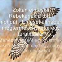 Interjú - Vendégszerző: M.Szolár Judit