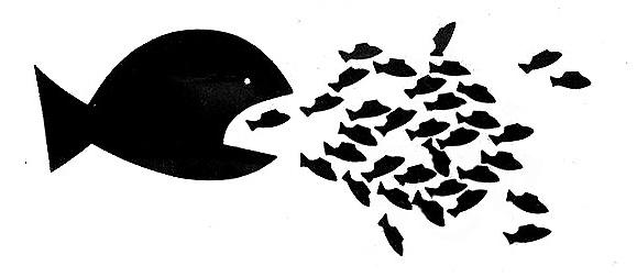 20130626-big-fish-little-fish1.jpg