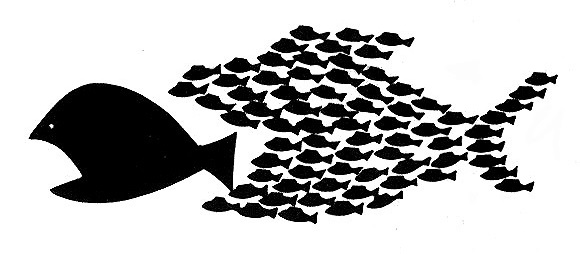 20130626-big-fish-little-fish_1.jpg
