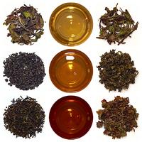 A tea útja: az ültetvénytől a csészéig
