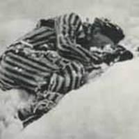 A Mühlviertler-i nyúlvadászat