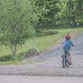 Bringára fel! - motivációs kisokos szülőknek