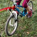 Trail-Gator - kerékpáros vontató szett