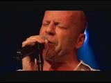 Zenefon - Bruce Willis