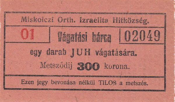 01_1926_300_kor_vagatasi_barca_02049.jpg