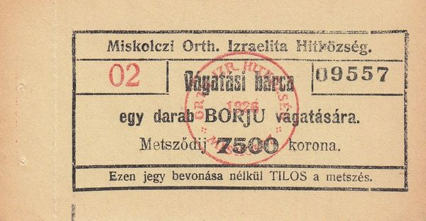 02_1926_7500_kor_vagatasi_barca_09557.jpg