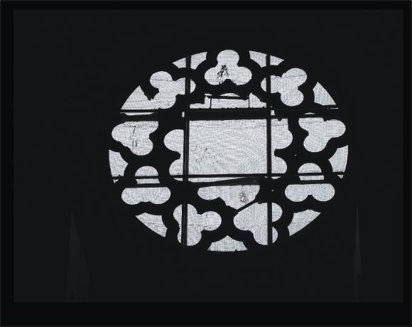rozsrozs 3.jpg