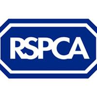 RSPCA - börtön és életfogytig tartó eltiltás kapott egy férfi kutyája megkéselése után