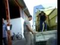 Skopjei állatkínzás, avagy a vardariste borzalmai - segítséget kérnek a helyi állatvédők