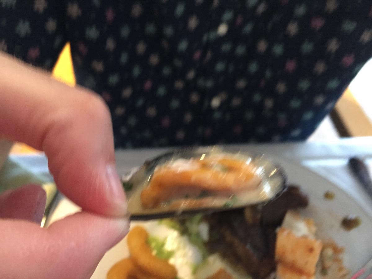 szia kagyló