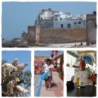 6. nap - Essaouria: nap, fény, kikötő I. - sör előttem...