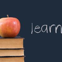 Mélyrepülésben a magyar oktatás színvonala