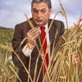 Így gyarapodott a fideszes pártelit a magyar földekből