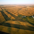 Agrár kórkép - a földesurak visszatérnek