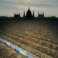 Új földtörvény - a családi gazdaságok tündöklése vagy bukása?