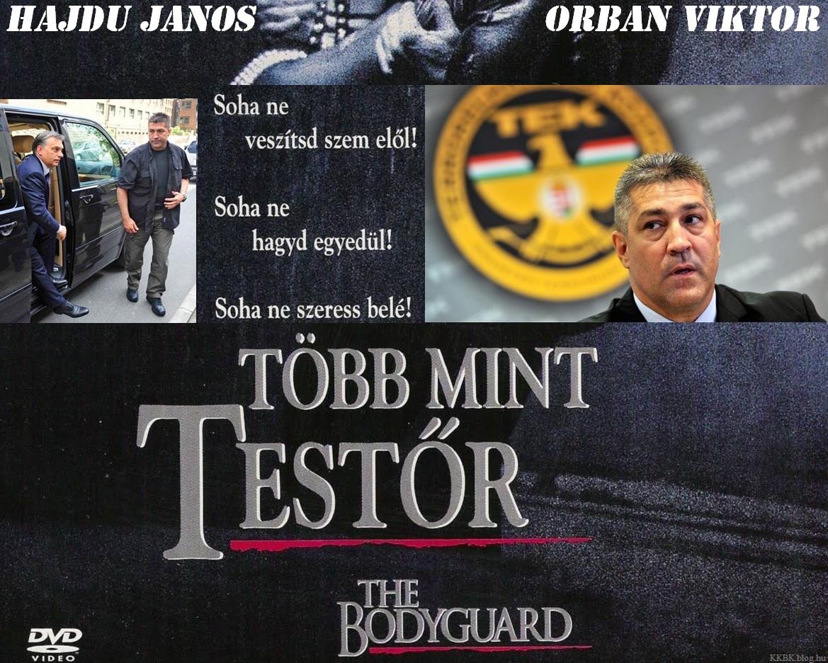 tek_tobb_mint_testor.jpg