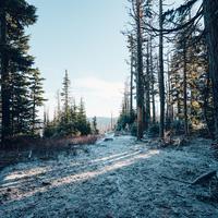 December 11 - Adventi áhitat - Teológus ifjúsági blog