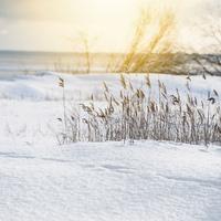 December 14 - Adventi áhitat - Teológus ifjúsági blog