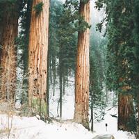 December 9 - Adventi áhitat - Teológus ifjúsági blog