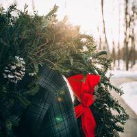 December 22 - Adventi áhitat - Megtisztítom őket