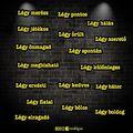 #teológus #olvasstöbbet #hajasistvan_teologus #drhe #Debrecen #teologus_blog_hu #teologus #photooftheday #photoshop #yellow