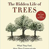 _FULL_ The Hidden Life Of Trees: What They Feel, How They Communicate—Discoveries From A Secret World. Camiseta state Decano torneos Descubre because