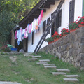 Spajzcetli:Muskátlis teregetés