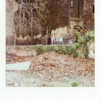 Tikos Dóra: Nyolcadik