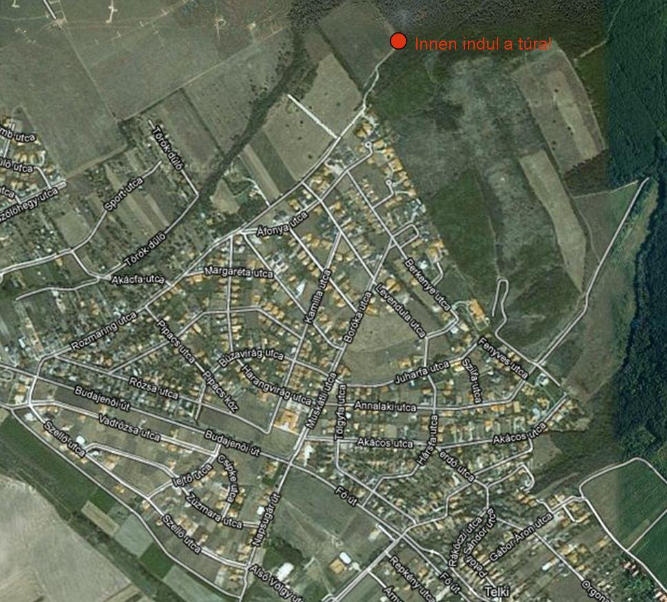 telki térkép Öreg tölgy tanösvény (Budai hg.)   terepgyerek telki térkép