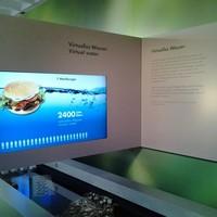 Virtuális víz