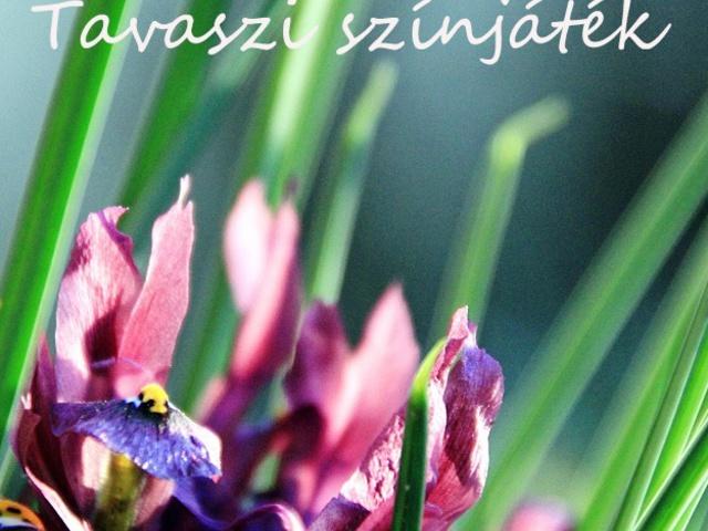 Tavaszi színjáték
