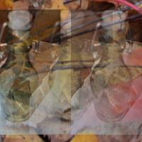 Őszi üvegező