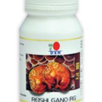 Milyen hatása van a Ganoderma gyógygombának?