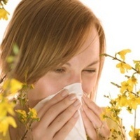 Allergia? - Volt, nincs!
