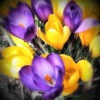 Tavaszi nagytakarítás testileg-lelkileg