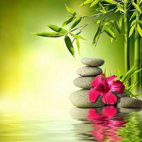 6 természetes otthoni praktika a szorongás csökkentésére